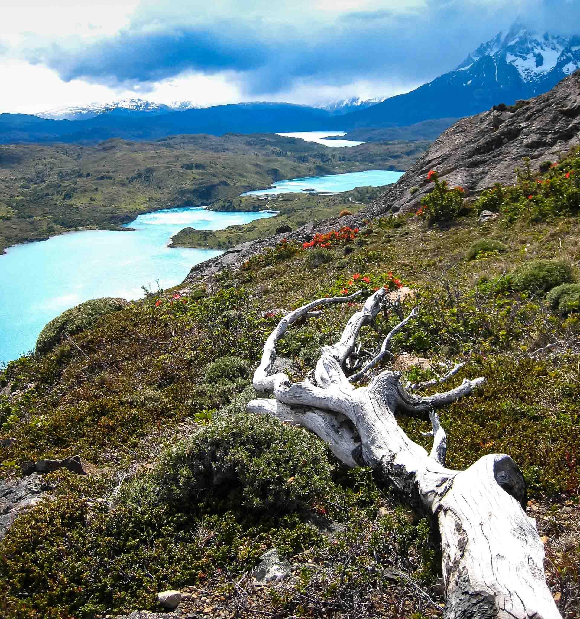 Hike Patagonia Chile