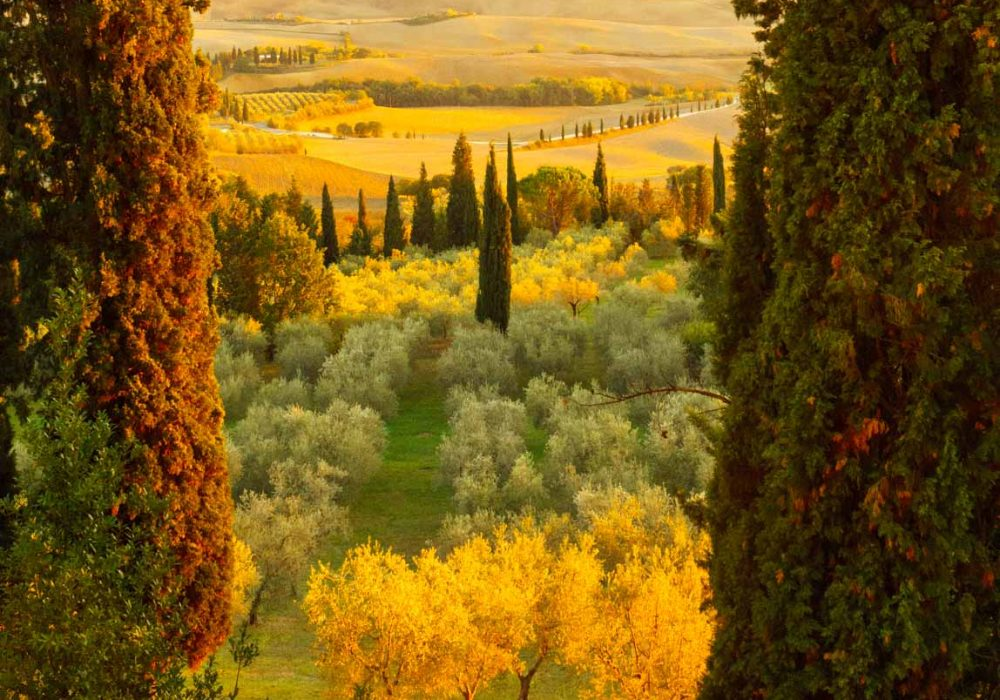 Tuscany_Pienza_Sunset