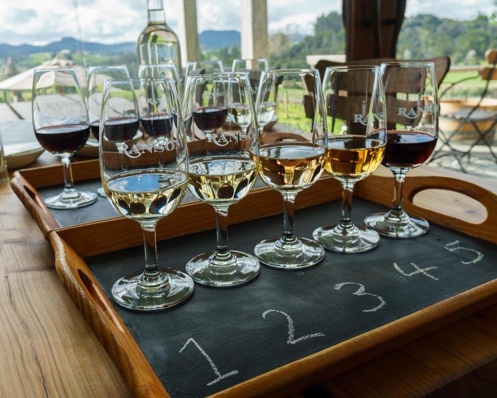 Matakana_Ransom_Wine_Tasting