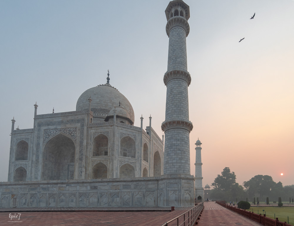 Taj Mahal Photos Sunrise Birds