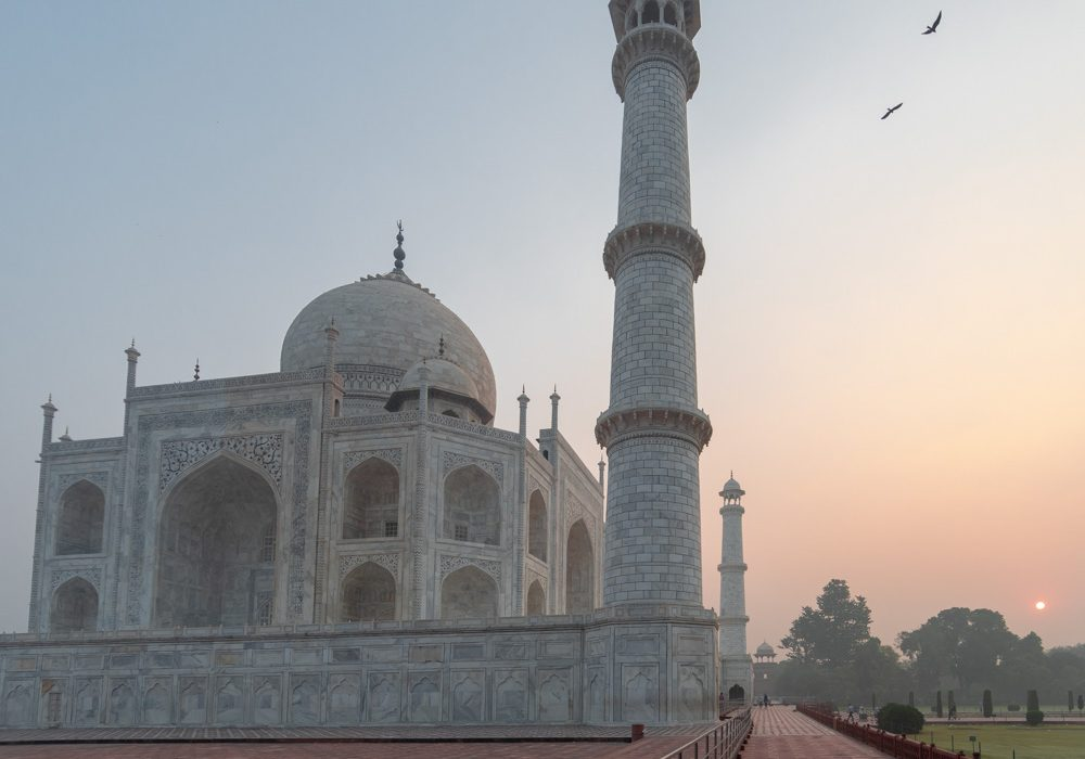Taj Mahal Photos Sunrise Birds Headline
