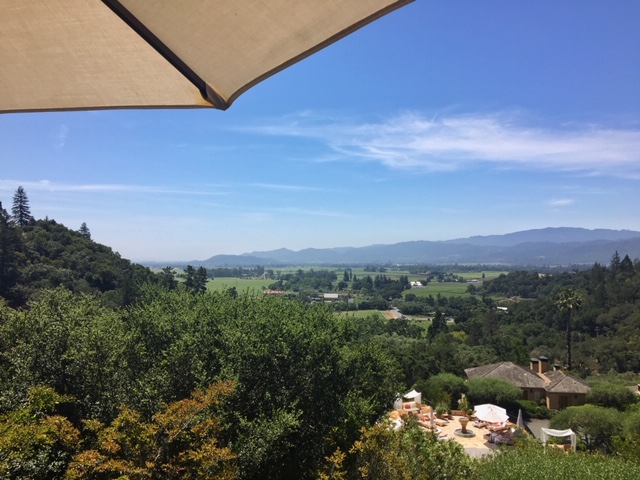 California Wine Country_Auberge du Soleil_Umbrella_View