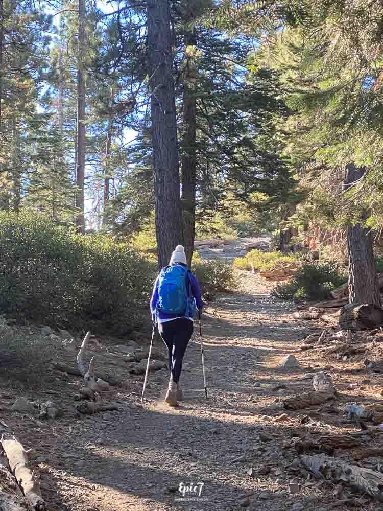 Mt Tallac Hike-Hiking Poles