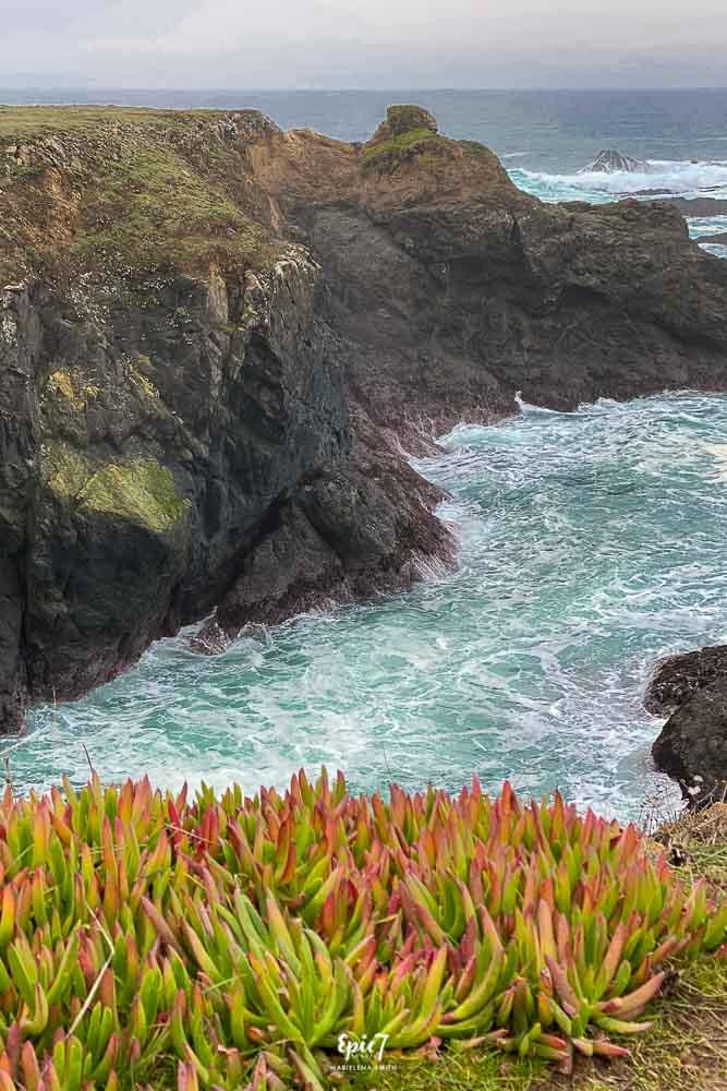 Mendocino Coastal Ocean View