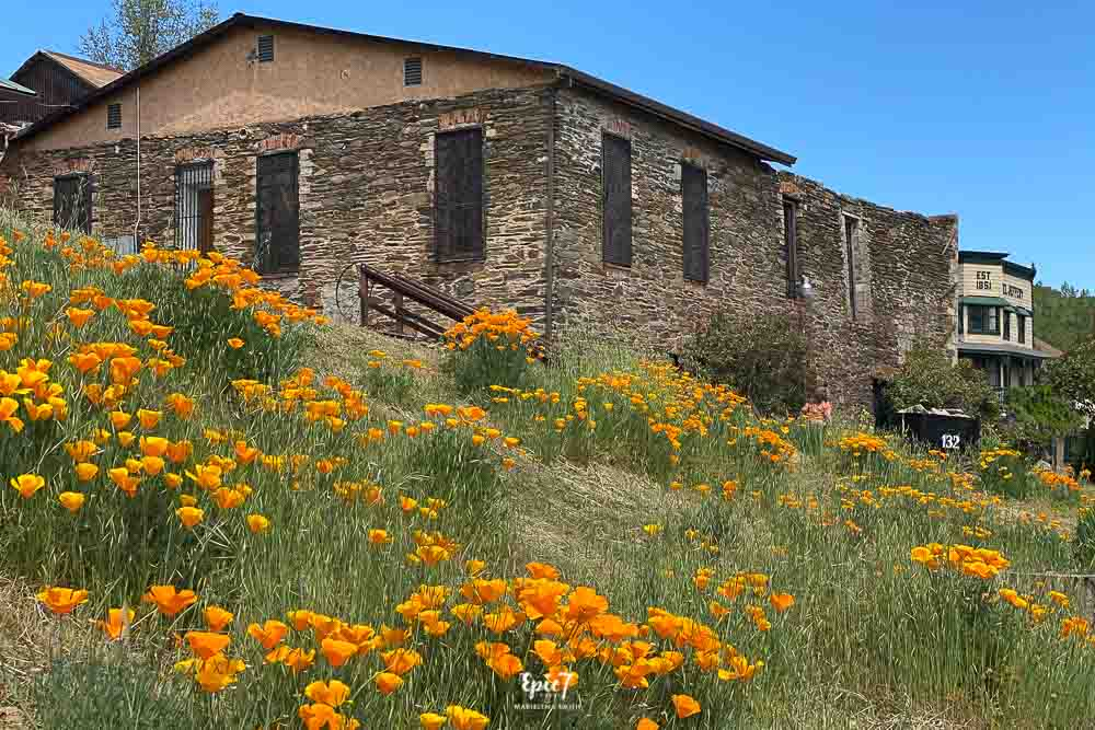 Things to Do Near Yosemite Northern Mariposa Museum and History Center