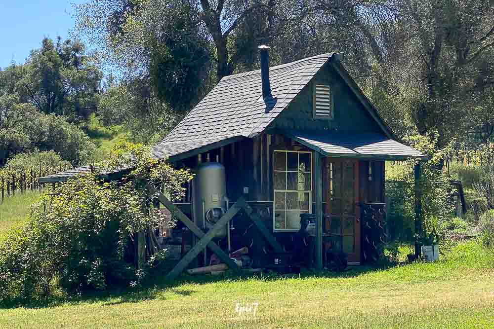 Things to do in Oakhurst California West Brook Wine Farm