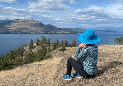 Things to Do in Whitefish Montana View of Flathead Lake